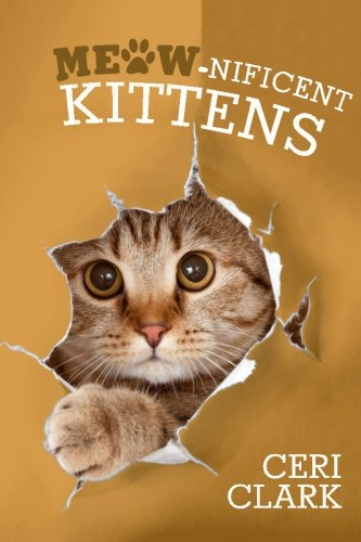 Meow-nificent Kittens: The Secret Personal Internet Address & Password Log Book for Kitten & Cat Lovers (Disguised Password Book Series)