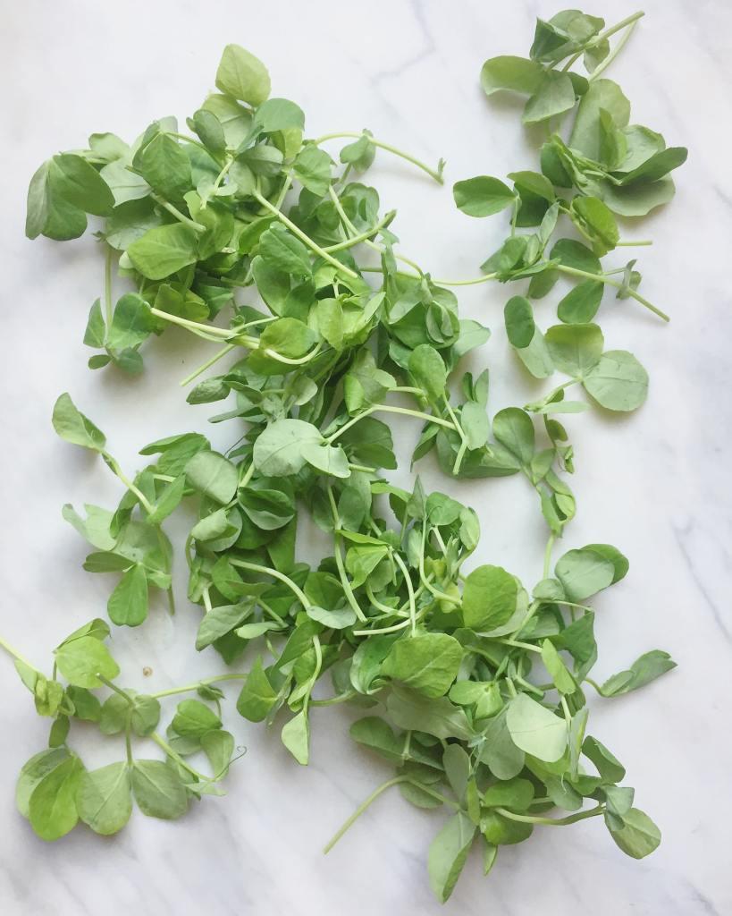 Pea Shoots   Natural Kitchen Adventures