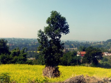 Another view on the way to Changu Narayan Temple