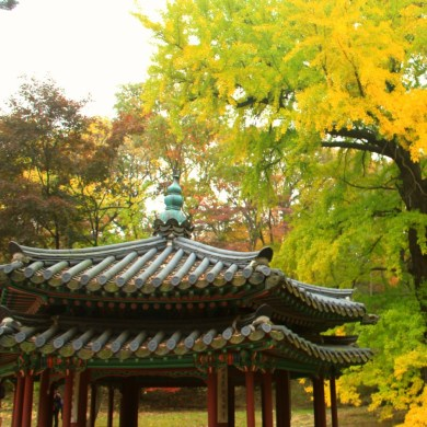 Two tiered roof Jondeokjeong
