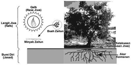 Pohon Zaytun
