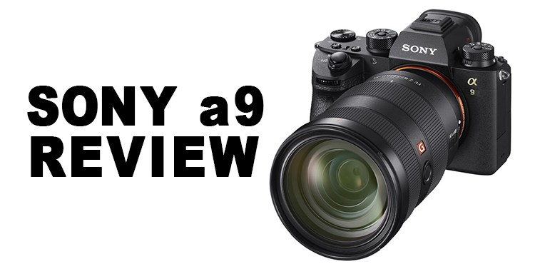 Sony A9 Review: A Defining Moment for Mirrorless Cameras | Certain ...