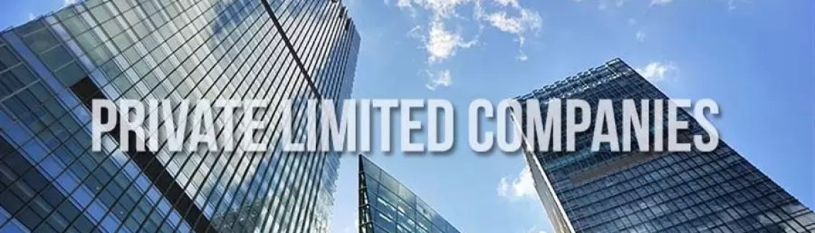Private Limited Company Services