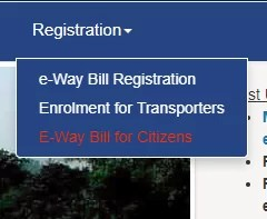 E-way bill for Citizens
