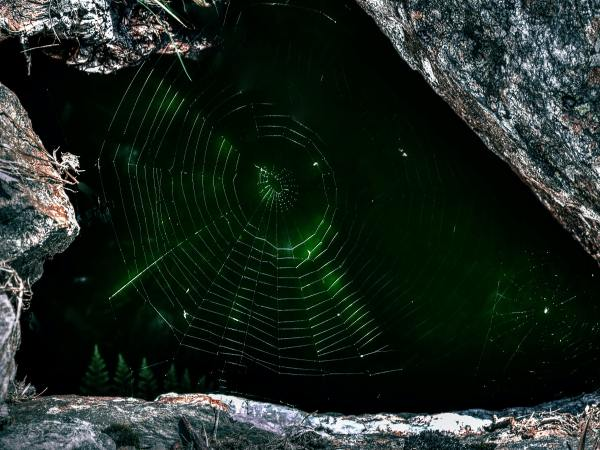 The Dark Web?  Should You Use It?