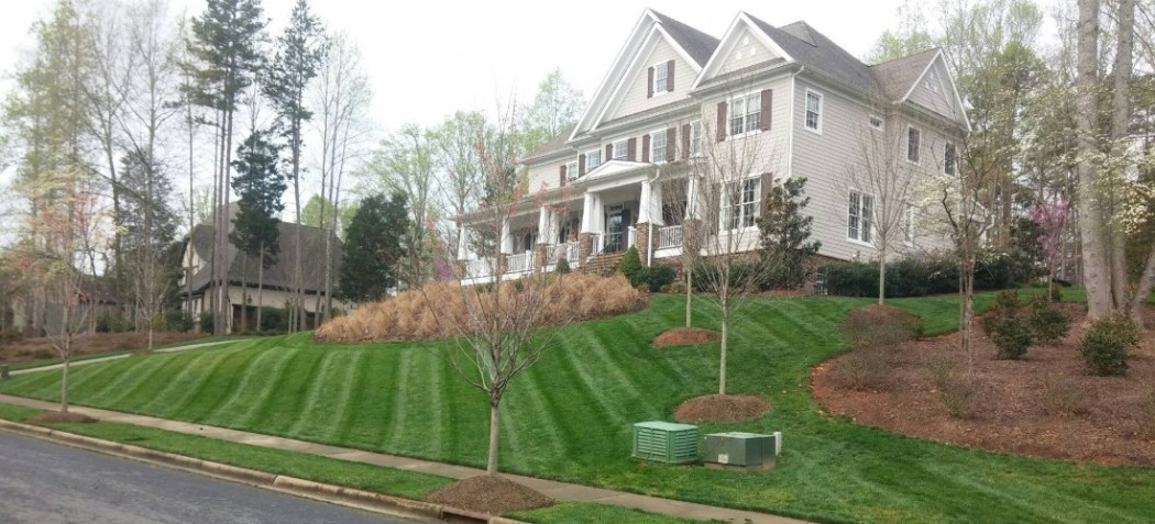 Residential Lawn Maint. Main pic