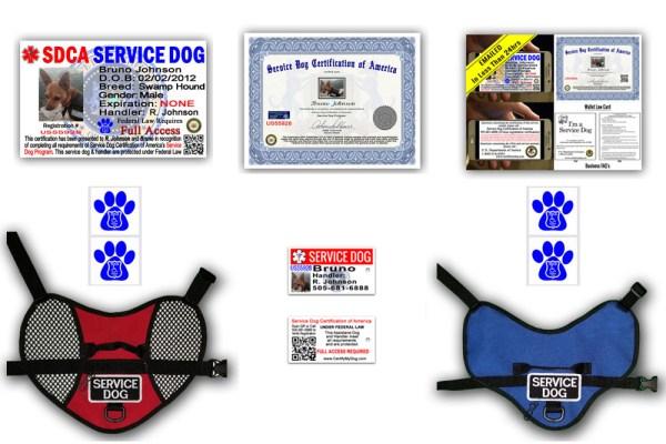 Digital Plus Service Dog Package
