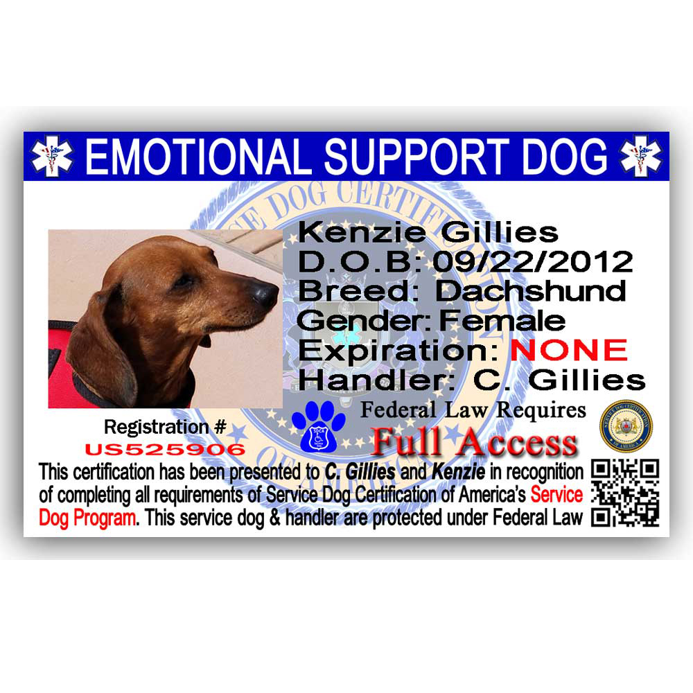 Esa Id Card Service Dog Certification Of America