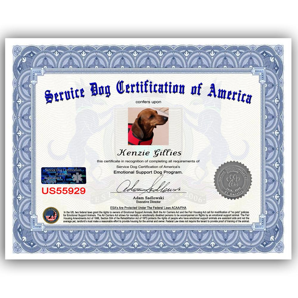 Esa Certificate Service Dog Certification Of America