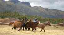 Peru Andes039