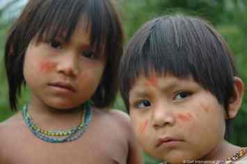 Peru Jungle013