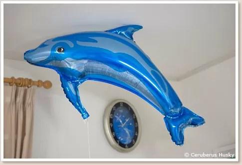 イルカの風船