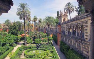 Jardines con palmeras en el Real Alcazar de Sevilla, España