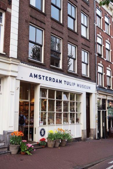 Guia de viaje: Amsterdam, Museo del Tulipán