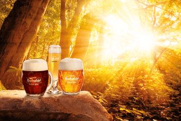 Industria Cervecera Checa