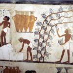 Cerveza egipcia