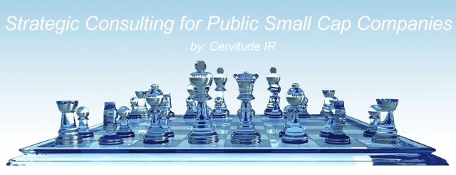 Strategic Consulting for Public Small Cap Companies