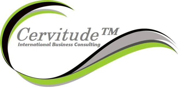 international business consulting