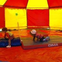 Vivre dans un cirque