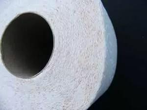 toilet-paper-87390_960_720