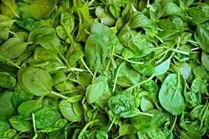 spinach-1522283_960_720