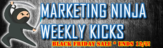 CYBER MONDAY DEAL - ENDS 12/5 - Marketing Ninja Weekly Kicks Club by C. E. Snyder Marketing LLC