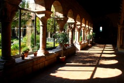 OCT: Cloisters