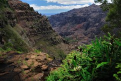 Waimea Canyon Trail