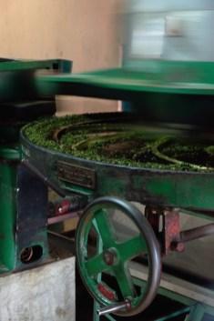 Ella | Halpewatte Tea Factory