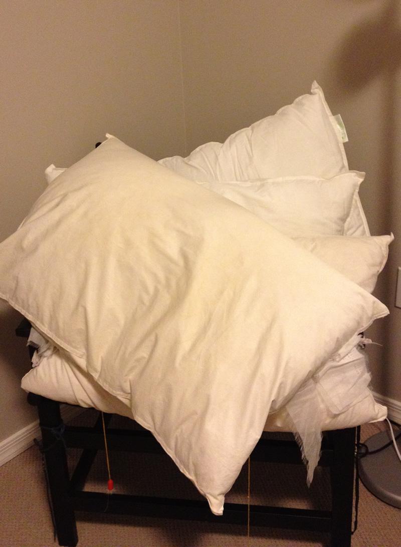 j ai donc achete deux nouveaux oreillers jeudi a ikea parce que deux des quatre oreillers de mon lit avaient plus de 10 ans les deux autres au premier