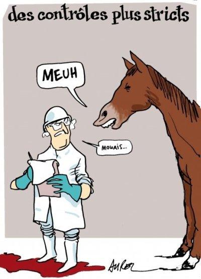 controles-stricts-viande-cheval-bd