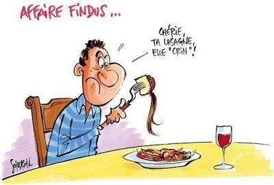 lasagne-crin-findus-drole-bd