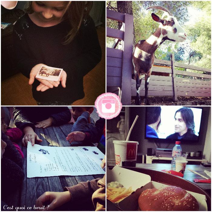 ma-semaine-instagram-var
