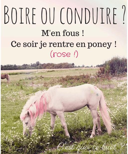 Je rentre en poney rose !