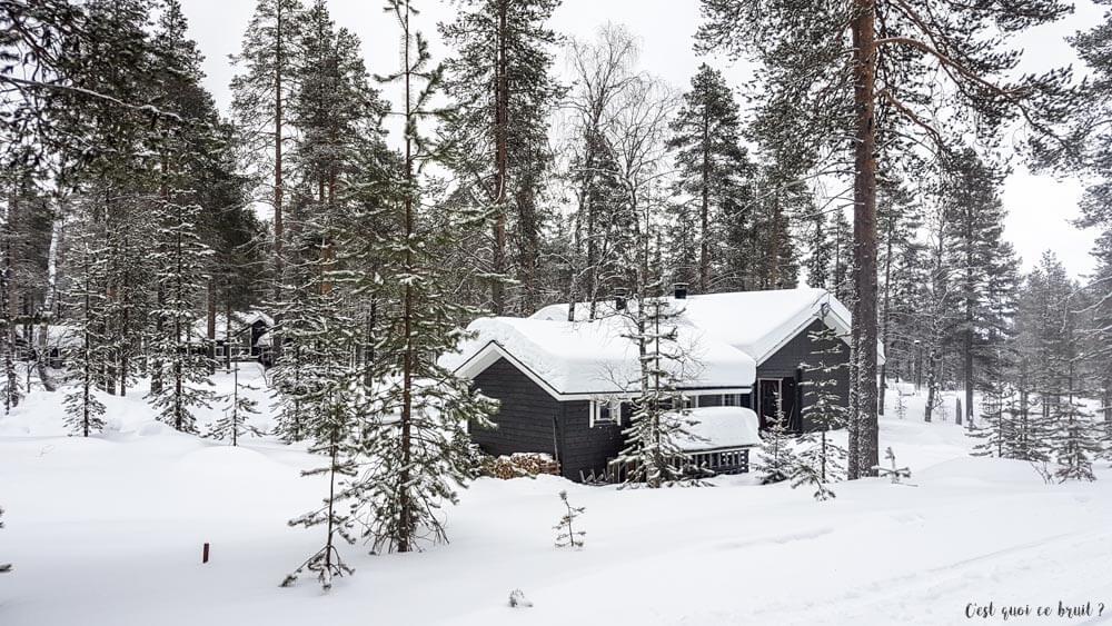 Laponie Finlandaise : paysages enneigés depuis la motoneige