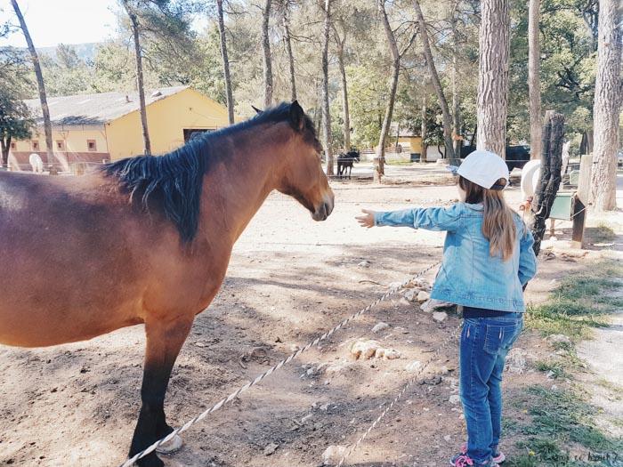 Miss L et les chevaux du ranch