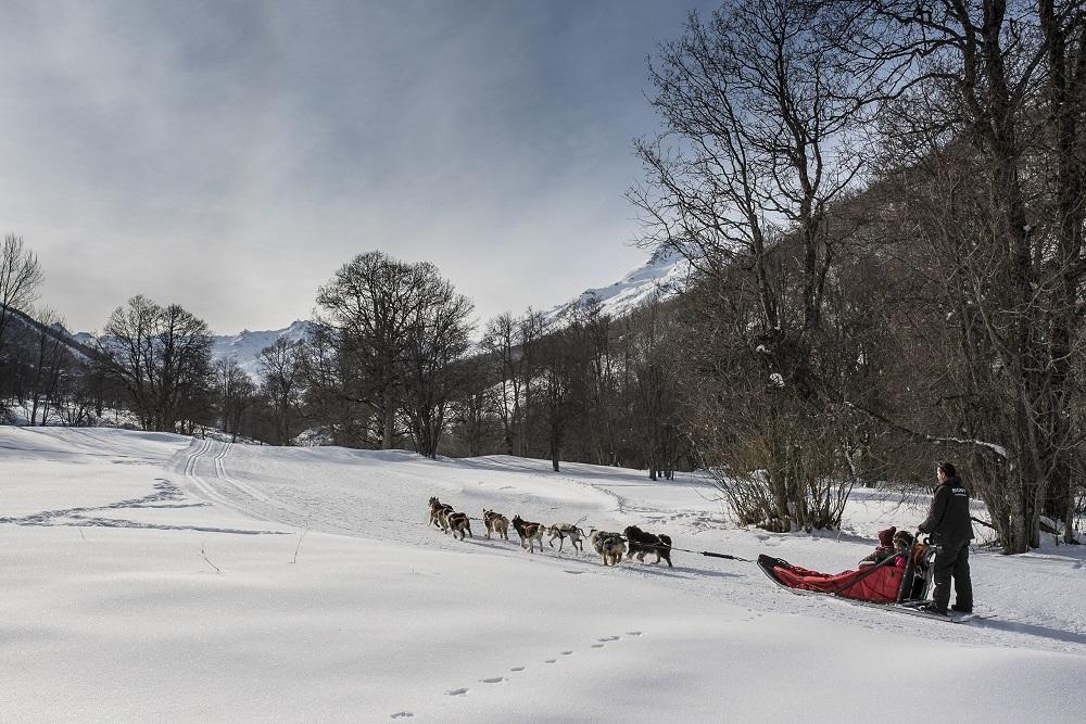 Saint Martine de Belleville chiens de traineau