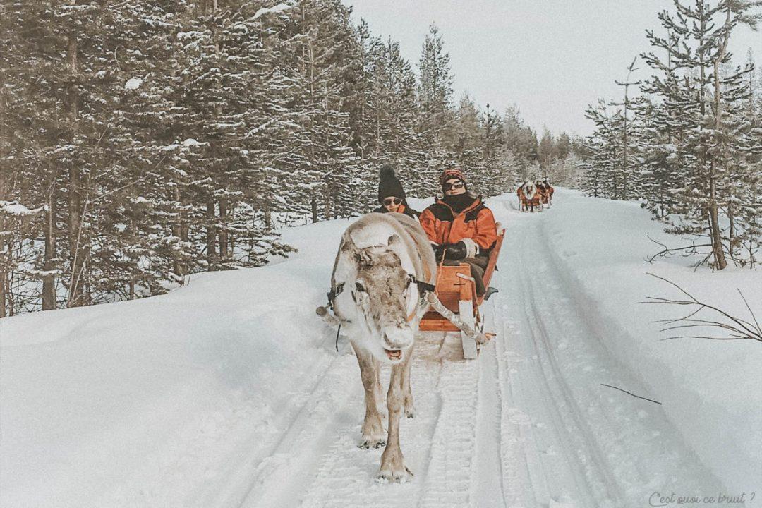 Laponie Finlandaise promenade rennes
