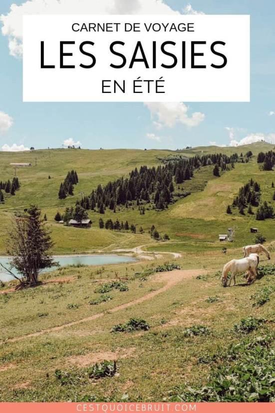 Carnet de voyage, notre séjour aux Saisies en famille, la montagne en été #savoie #france #lessaisies #montagne #voyage