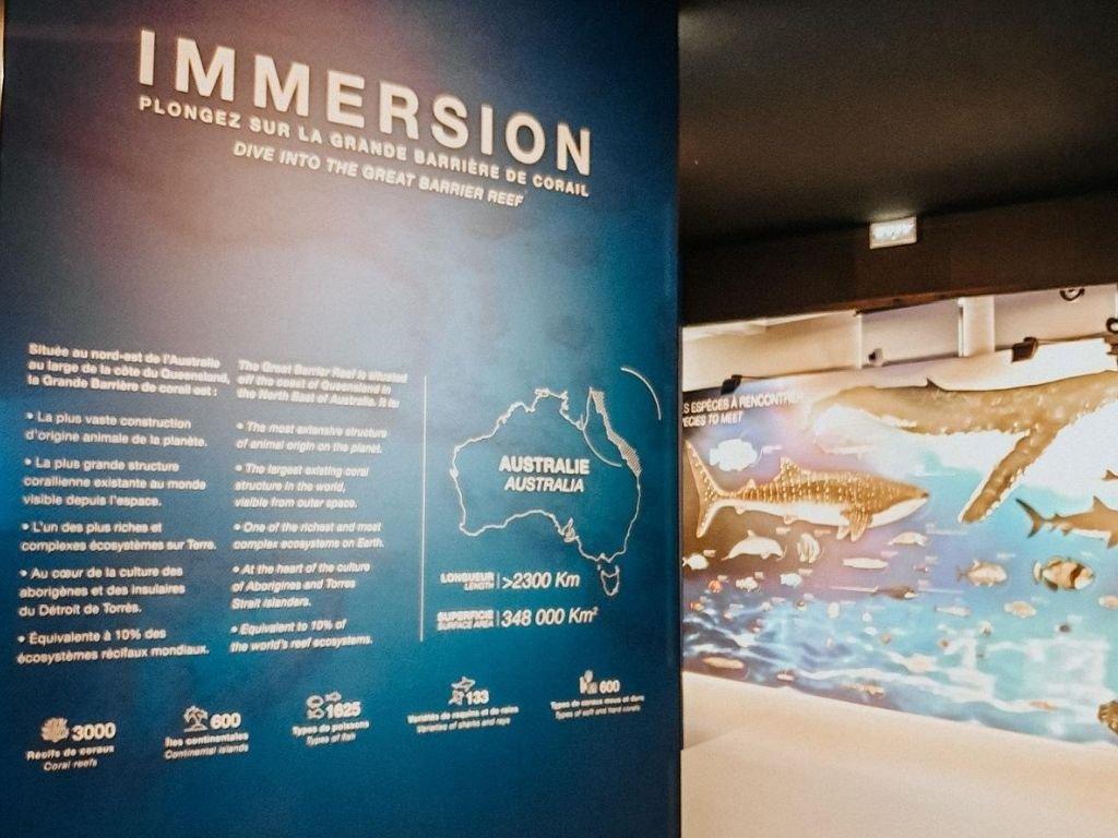 L'exposition IMMERSION, plongée dans la Grande Barrière de Corail