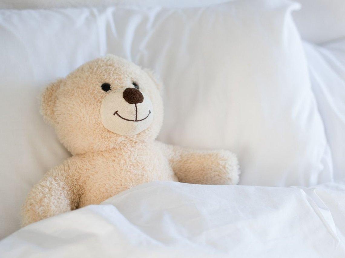 Comment se débarrasser des punaises de lit ?