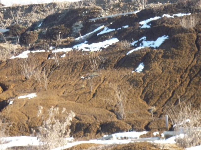 muresring Detaliu al taluzului alunecat spre pista (partea dreapta sens de parcurgere), in zona Km 3+200