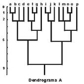 dendro1