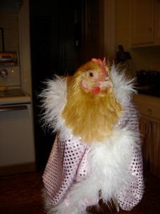 lily-chicken-in-cape