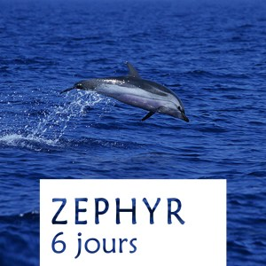 Stages ZEPHYR