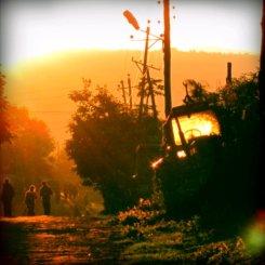 Goldenes Abendlicht auf dem Heimweg