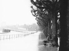 Überflutete Promenade am Rheinufer in Bonn