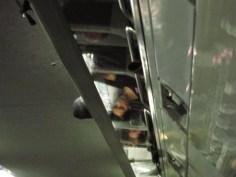 Eine junge Frau spiegelt sich in den Gepäckablagen des Eurostar nach Brüssel