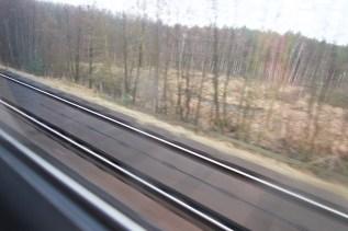Öde, braune Winterlandschaft aus dem Zugfenster