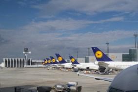Lufthansa Flugzeuge am Flughafen Frankfurt